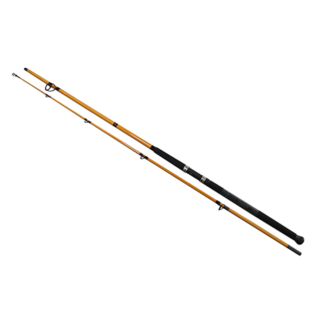 Daiwa FT Surf Spinning Rod